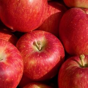 りんご 95円(税込)
