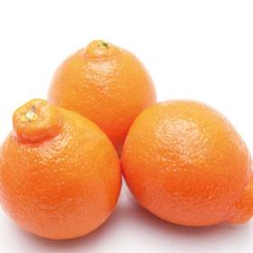 ミネオラオレンジ 295円(税抜)