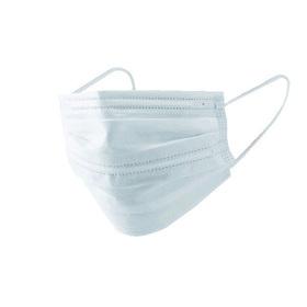 不織布使い切りマスク レギュラーサイズ 30枚入り 698円(税込)