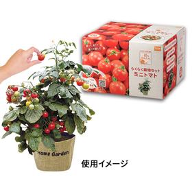 超かんたん!らくらく栽培セット ミニトマト 598円(税抜)