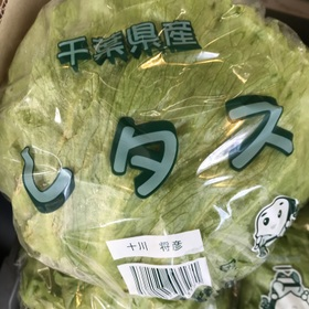 レタス 85円(税抜)
