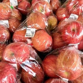 ふじリンゴ 538円(税込)