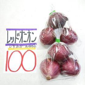 レッドオニオン 100円(税込)
