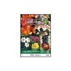 秋植物予約 価格なし