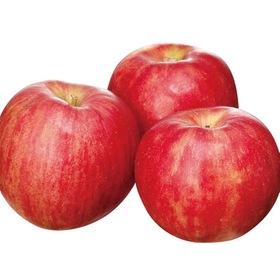 サンつがるりんご 537円(税込)