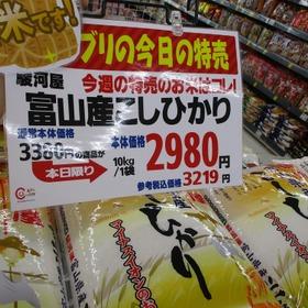 富山産こしひかり10㎏ ※250円引きクーポン使えるよ! 3,219円(税込)