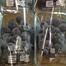 巨峰(種なし) 751円(税込)