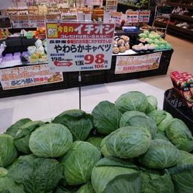 キャベツ 106円(税込)
