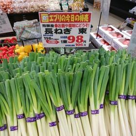 長ネギ 106円(税込)