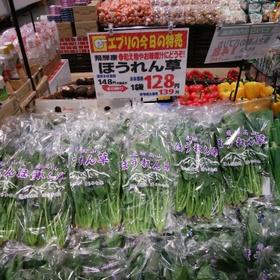 ほうれん草 139円(税込)