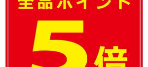8/17~19お買い上げ全品ポイント5倍 プレゼント