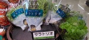サラトリオ 198円(税抜)