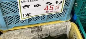 きゅうり 45円(税抜)