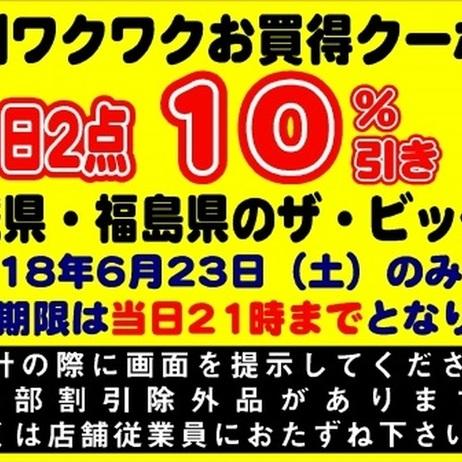 6月23日限定!特別ワクワクお買い得クーポン券! 10%引