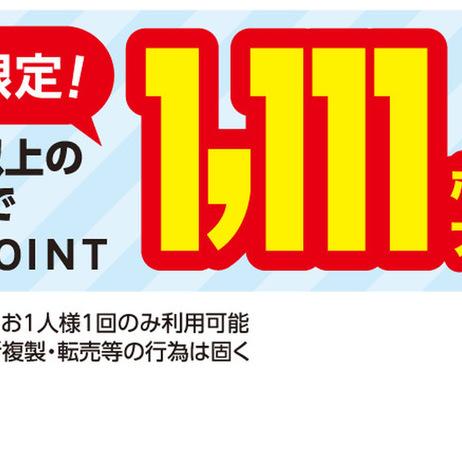 2月限定1万円以上ご購入で1,111ptプレゼント 1111ポイントプレゼント