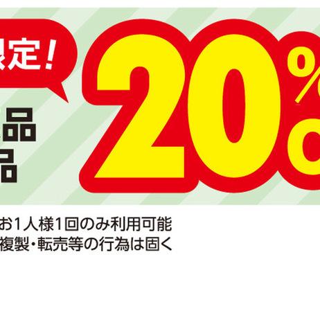 2月限定医薬品全品20%OFF 20%引