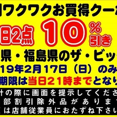 2月17日限定!特別ワクワクお買い得クーポン券! 10%引