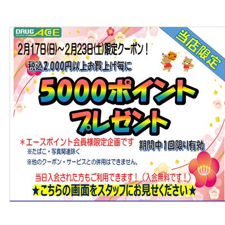 税込2,000円お買上げ毎にポイントプレゼント! 5000ポイントプレゼント