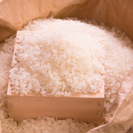 米5kg 10%引