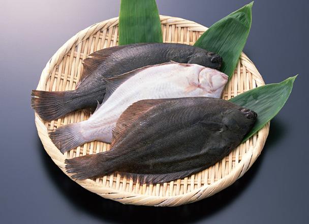 カラスガレイ 111円(税抜)