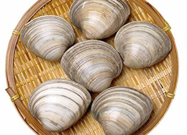 ほんびのす貝 98円(税抜)