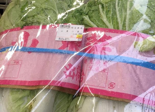 山東白菜 1,800円(税抜)