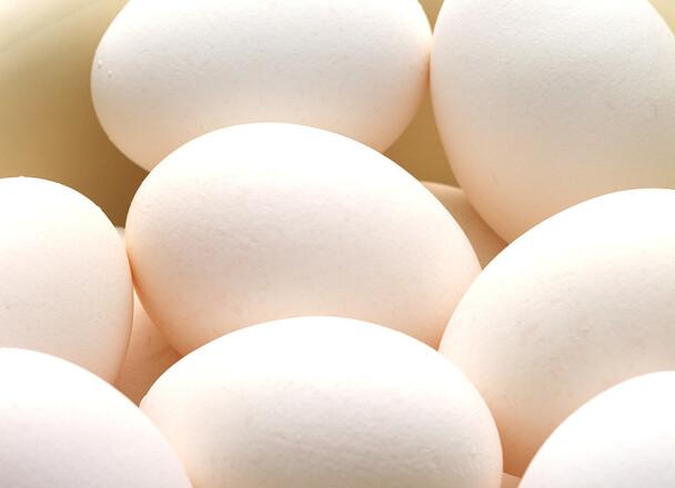 鶏卵(白)Mサイズ 10個入 93円(税抜)