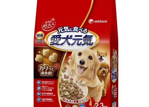 愛犬元気 ビーフ・野菜 547円(税抜)