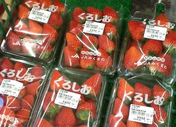 いちご 500円(税抜)