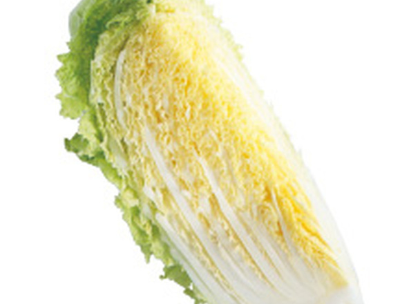 白菜 55円(税抜)
