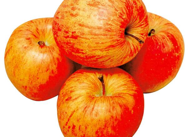 りんご 137円(税抜)