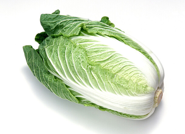 白菜1/2カット 98円(税抜)