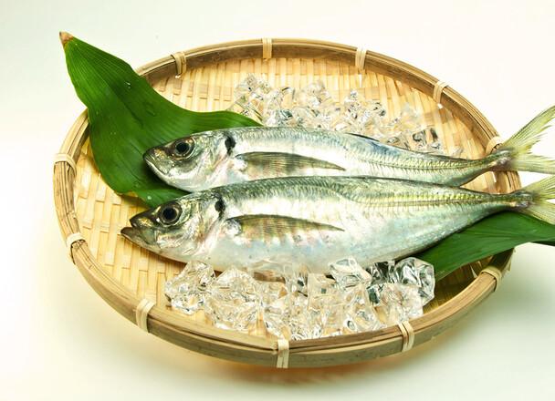 お刺身用真あじ 58円(税抜)