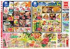 ベルク 川越東田町店のチラシ・特売情報