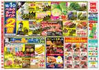 ベルク 八潮鶴ケ曽根店のチラシ・特売情報
