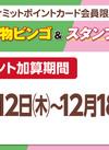 お買物ビンゴ・お買物スタンプ9 ポイント加算日!