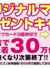 【予告】マイバッグプレゼントキャンペーン開催!