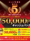 【ピコカ会員様限定】ピコカ5周年ビッグ5チャージキャンペーン