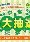 3/1(月)-3/31(水)春のオンライン大抽選会を開催。