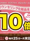 期間限定!カウンセリング化粧品 現金ポイント10倍!✨