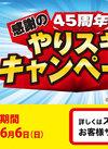 「45周年 感謝のやりすぎキャンペーン」を実施中!