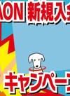 【イオンビッグ限定】電子マネーWAON新規入会キャンペーン!