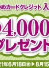ゆめカードクレジット WEB限定入会キャンペーント!