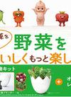 おうちで野菜をつくろう 収穫体験キットプレゼントキャンペーン