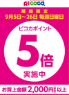 【ピコカ会員様限定】9月の日曜日 ピコカポイント5倍