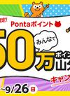 使っておトク!50万Pontaポイント山分けキャンペーン!