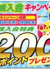 ピコカ入会キャンペーン実施中!! 2/28㊌まで