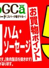 11/14(水)お肉 スパークコジカカードお買物ポイント5倍