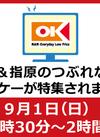 TBS「坂上&指原のつぶれない店」でオーケーが放送されます
