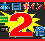 本日6月1日(月)★全品ポイント2倍デー★